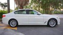 Cần bán BMW 5 Series 520i 2019, màu trắng, nhập khẩu