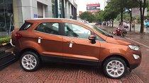 Bán xe Ford EcoSport Titanium 1.5L AT sản xuất 2019, màu nâu, giá 590tr
