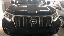Bán Toyota Prado 2.7 VX đời 2019, xe nhập Nhật, màu đen giao ngay