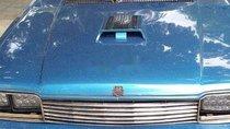Bán Honda Accord năm sản xuất 1983, nhập khẩu