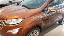 Cần bán xe Ford EcoSport Titanium 2019, màu nâu