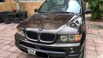 Bán BMW X5 2004, màu nâu, nhập khẩu