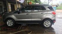 Bán Ford EcoSport đời 2016, màu bạc xe gia đình, giá tốt