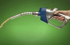 Bảo hiểm sẽ không đền bù ô tô dùng xăng kém chất lượng