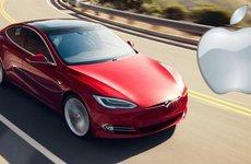 Nghi vấn Apple thâu tóm Tesla: Musk bảo không, chuyên gia bảo có