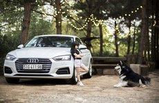 Mẫu nhí phong cách bên xe sang Audi A5 Sportback 2018