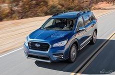 Subaru Ascent 2019 bước vào giai đoạn sản xuất