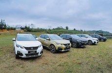 Peugeot tăng trưởng ầm ầm nhờ bộ đôi SUV đắt khách 3008 và 5008