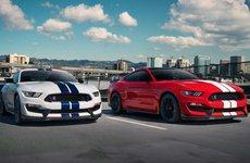 Ford Mustang Shelby GT350 2019 nâng cấp ngoại hình ấn tượng hơn