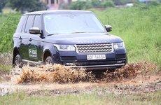 Dàn xe Land Rover hàng chục tỷ lội bùn trải nghiệm ở Hà Nội