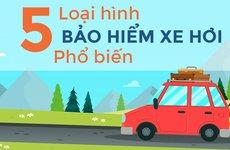 Bảo hiểm ô tô có bao nhiêu loại?