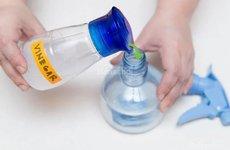 5 loại nước thần kì giúp bạn vệ sinh xe hơi dễ dàng