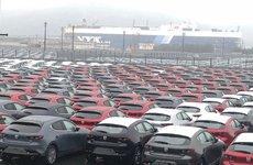 Lộ bằng chứng cho thấy Mazda 3 2019 đã sản xuất thương mại