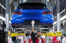 Porsche tiếp tục bị kiện do gian lận khí thải