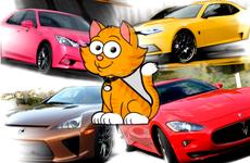 Tuổi Kỷ Mão 1999 mua xe màu gì