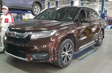 SUV Honda Avancier bất ngờ xuất hiện tại đại lý ở Việt Nam