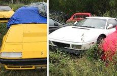 Phát hiện bộ sưu tập siêu xe Ferrari nằm phơi thân suốt 1 thập kỷ tại một bãi cỏ tại Mỹ