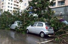 Mùa mưa, đỗ xe ô tô cần tránh những vị trí nào?