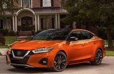Nissan Maxima 2020 - đối thủ nặng ký của Toyota Camry có giá khởi điểm 813 triệu VNĐ