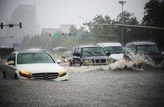 Kinh nghiệm tránh mua phải ô tô cũ từng bị thủy kích