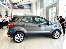 Ford Thái Bình bán ô tô Ford EcoSport đời 2021, giá tốt cho người thiện chí