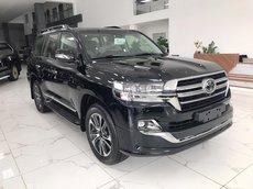 Viet Auto bán Toyota Land Cruiser 4.5V8 máy dầu 2021 nhập mới