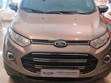 Bán xe Ford EcoSport Titanium ghi xám 1.5 AT năm 2014