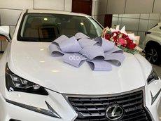 Bán Lexus NX 300 năm sản xuất 2020