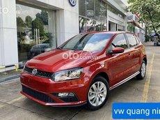 Cần bán Volkswagen Polo năm 2021, màu đỏ, nhập khẩu nguyên chiếc