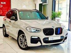 Cần bán gấp BMW X3 năm sản xuất 2019, màu bạc