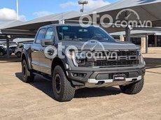Ford F150 Raptor 2021, giao xe toàn quốc