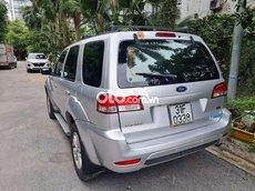 Cần bán xe Ford Escape năm sản xuất 2010, màu bạc