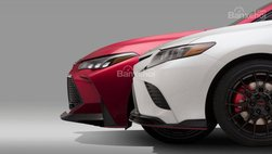 Toyota Camry 2019 và Avalon 2019 sẽ có bản TRD