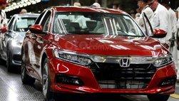 Honda Accord và Civic cắt giảm số lượng sản xuất