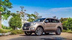 Doanh số SUV 7 chỗ Ford Everest tiếp tục đà tăng mạnh, chưa có dấu hiệu chững lại