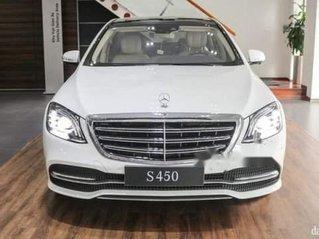 Cần bán xe Mercedes-Benz S450 năm 2018, xe chính chủ giá thấp, còn mới