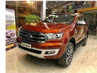 Cần bán xe Ford Everest Ambiente MT sản xuất 2019, giá thấp
