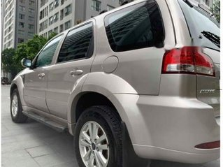 Cần bán xe Ford Escape đời 2012, form mới, màu vàng cát