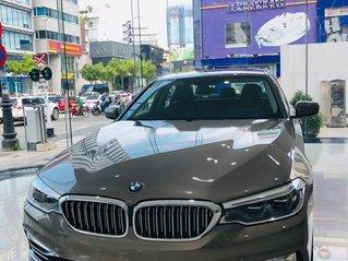 Bán BMW 5 Series 2019, màu xám, xe nhập