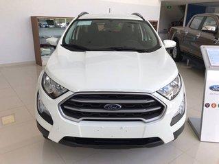 Cần bán Ford Ecosport Ambiente MT 1.5L năm 2019, giá tốt, giá cạnh tranh, giao nhanh