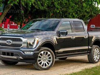 Bán Ford F150 Limited model 2021 nhập Mỹ