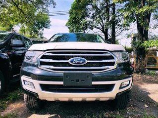 Ford Everest Trend 2.0 4x2 AT 2020, ưu đãi ngập tràn