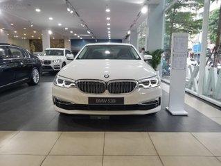 BMW 530i Luxury Line nhập khẩu nguyên chiếc từ Châu Âu