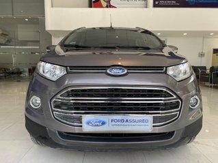 Bán Ford EcoSport đời 2014, màu nâu hổ phách, nhập khẩu