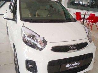 Bán Kia Morning năm sản xuất 2020, màu trắng, xe nhập, giá tốt