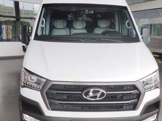 Bán Hyundai Solati 2019 độ Limo sản xuất năm 2019, giá thấp, giao nhanh toàn quốc, tặng ngay gói phụ kiện cực hot