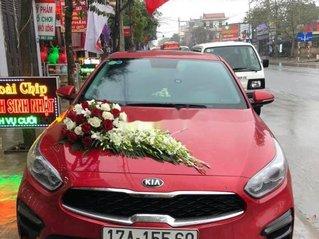 Cần bán Kia Cerato năm sản xuất 2019, xe mới, gia đình sử dụng