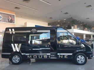 Ford Transit Limousine năm 2019