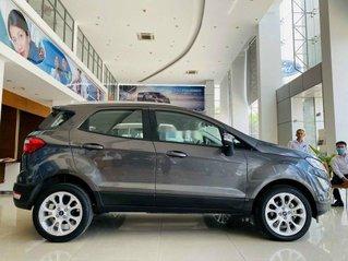 Cần bán xe Ford EcoSport đời 2020, màu xám