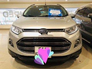 Cần bán gấp Ford EcoSport sản xuất năm 2017, màu bạc